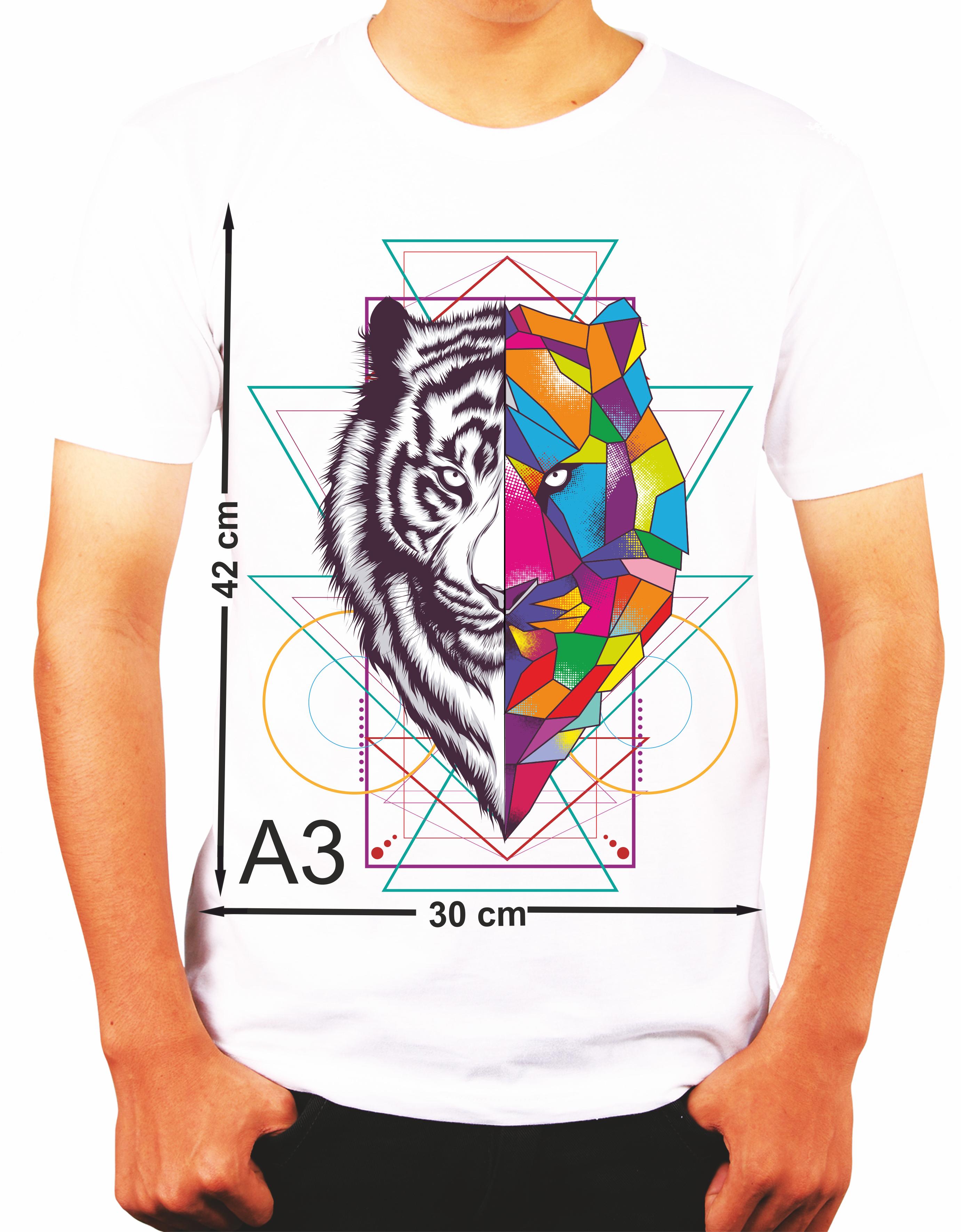 model_tshirt_man_a3